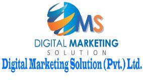 Foto de Digital Marketing Solution Pvt. Ltd.